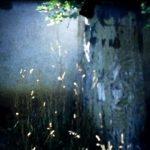 jpg/Esquisses_khirgizes_2_500x400_.jpg